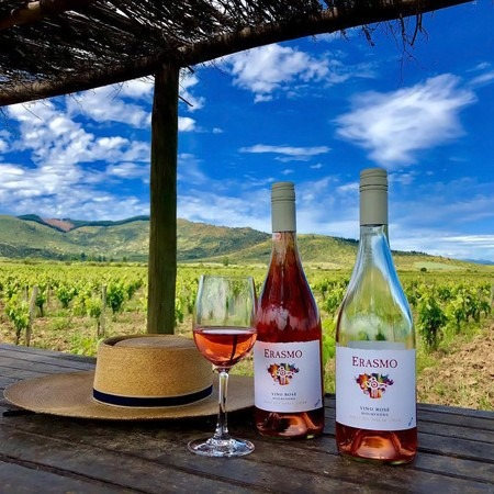 6 vinhos chilenos para harmonizações na Semana Santa