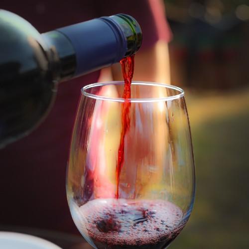 Degustação de vinhos no Rancho Canabrava